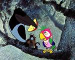 фото Возвращение блудного попугая